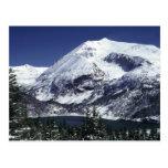 Snowy Colorado Mountain Postcards