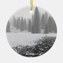 christmas, forest, snow, trees, lights, digital, blasphemy, photo, Ornament with custom graphic design