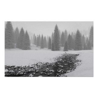 Snowy Creek Poster