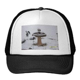snowy day birdbath trucker hat