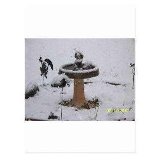 snowy day birdbath postcard