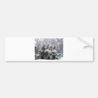 snowy day bumper sticker