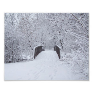 Snowy Day Photograph