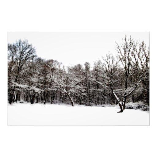 Snowy Dreams Photo