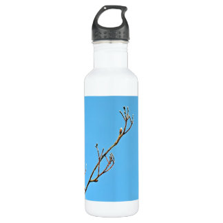 Snowy dry branch against bright blue background 24oz water bottle