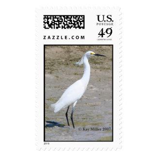 Snowy Egret-1-km-05 Postage