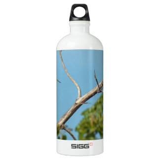 Snowy Egret Aluminum Water Bottle