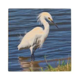 Snowy Egret at the Pond Maple Wood Coaster