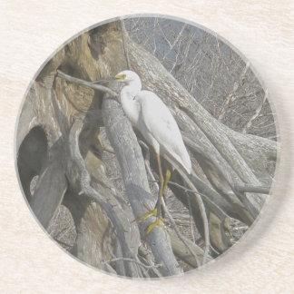 Snowy Egret Bird Sandstone Coaster