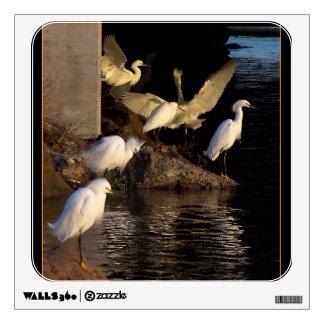 Snowy Egret Bird Wildlife Ocean Fishing Wall Decal