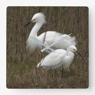 Snowy Egret Birds Wildlife Animal Photography Square Wall Clock