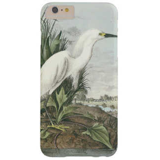 Snowy Egret by Audubon Barely There iPhone 6 Plus Case
