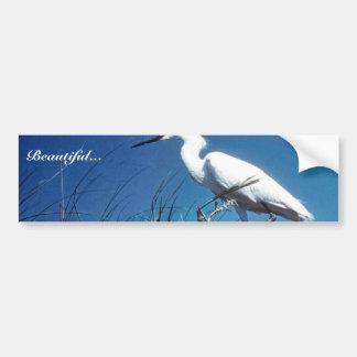 Snowy Egret Car Bumper Sticker