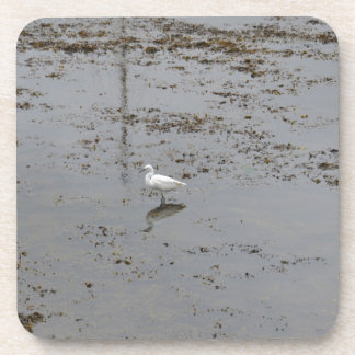 Snowy Egret Drink Coasters