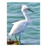 Snowy Egret Customized Letterhead