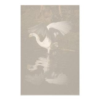 Snowy Egret Dancing Stationery