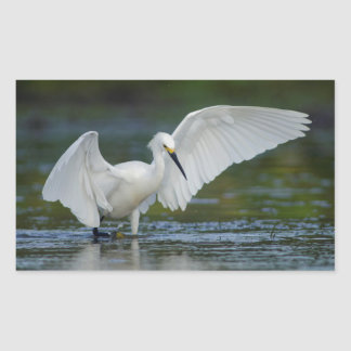 Snowy Egret (Egretta thula) Rectangular Stickers