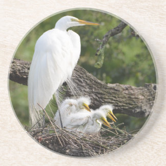Snowy Egret Family Drink Coasters