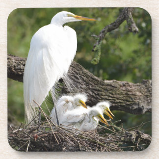 Snowy Egret Family Drink Coaster