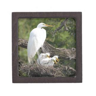 Snowy Egret Family Premium Keepsake Box