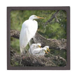 Snowy Egret Family Premium Trinket Box