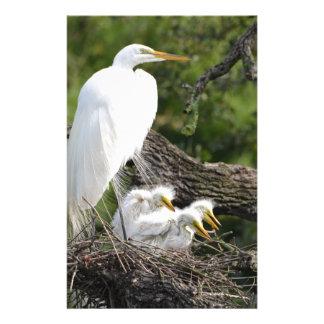 Snowy Egret Family Stationery