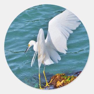 Snowy Egret Fishing Classic Round Sticker