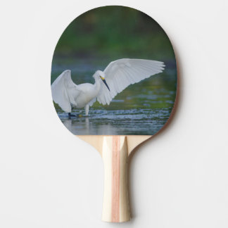 Snowy Egret Fishing in a Texas Pond Ping Pong Paddle