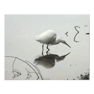 snowy egret fishing invitation
