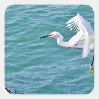 Snowy Egret In Flight Square Sticker