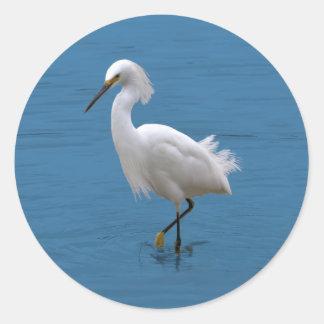 Snowy Egret in Water Sticker