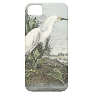 Snowy Egret iPhone SE/5/5s Case