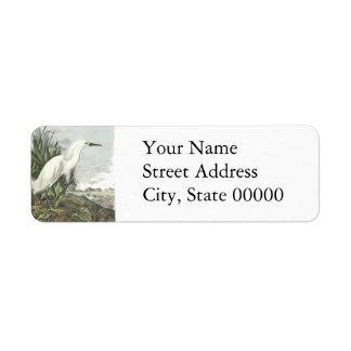 Snowy Egret, John Audubon Return Address Labels