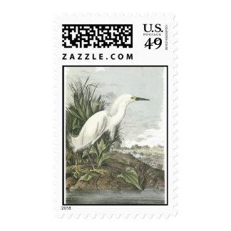 Snowy Egret, John Audubon Stamps