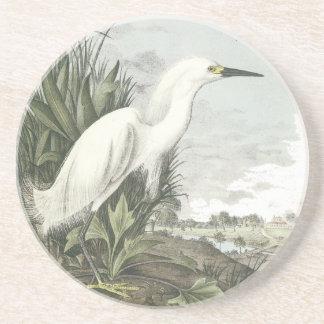 Snowy Egret, John Audubon Sandstone Coaster