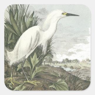 Snowy Egret, John Audubon Square Sticker