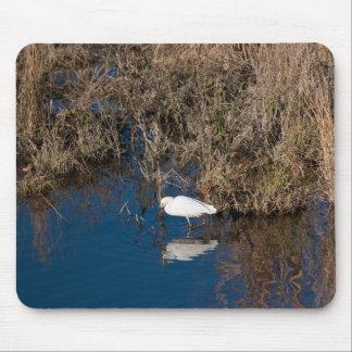 Snowy Egret Mouse Pads