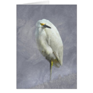 Snowy Egret Note Card