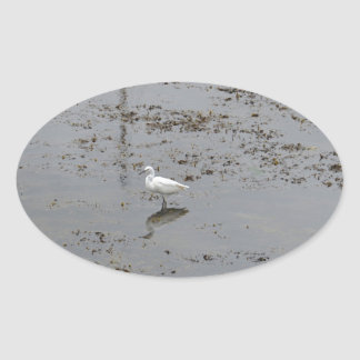 Snowy Egret Oval Sticker