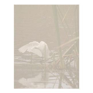 Snowy Egret @ Pond Letterhead