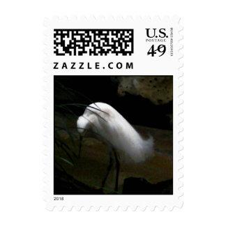 Snowy Egret Postage Stamp