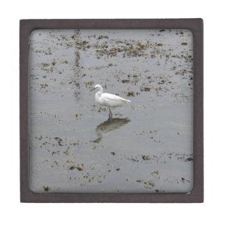 Snowy Egret Premium Trinket Box