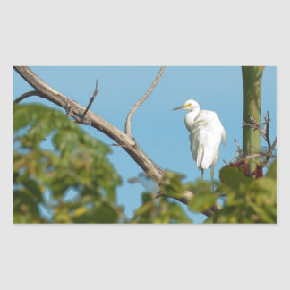 Snowy Egret Rectangular Sticker