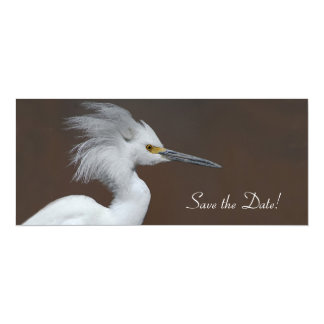 Snowy Egret Save the Date! Card
