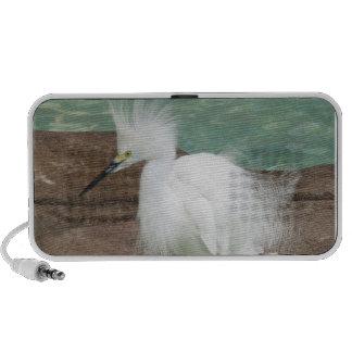 Snowy Egret Speakers