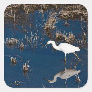 Snowy Egret Square Sticker