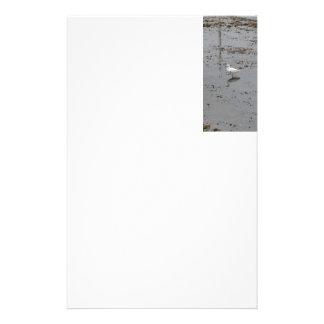 Snowy Egret Stationery