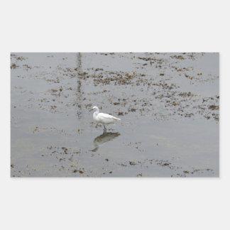 Snowy Egret Rectangular Stickers