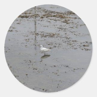 Snowy Egret Round Stickers