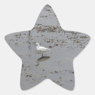 Snowy Egret Star Sticker